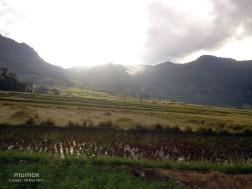 9 sawah dan gunung
