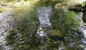 2013-07-05 air sungai jernih