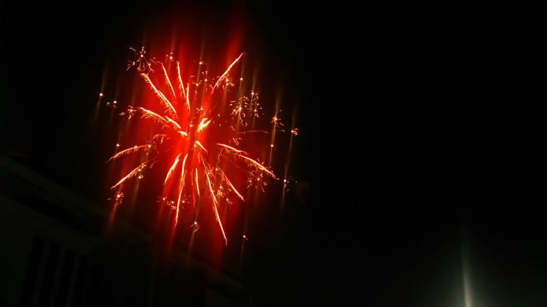 bunga api